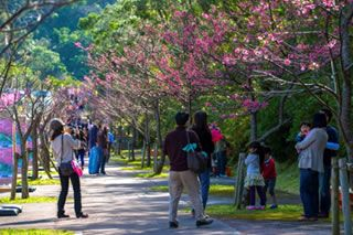 沖縄県の基礎情報「地理」のサムネイル画像