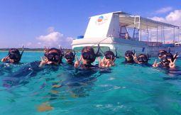 「【石垣島】半日シュノーケリングor体験ダイビング」のサムネイル画像