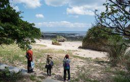 「【八重瀬町】沖縄の残された原生林「ホロホローの森」で自然観察エコツアー」のサムネイル画像