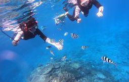 「【名護市】沖縄自然体験SDGsプログラム」のサムネイル画像